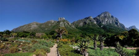 Activities & Concierge - kirstenbosch